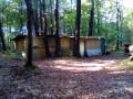 Cabanes dans la forêt