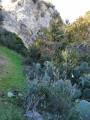 Vallon Sud du Plateau de la Caume après les crêtes et Mont Gaussier