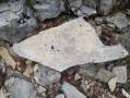 Calcaire bitumineux