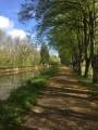 Canal de Champagne à Bourgogne