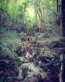 Cascade de Tuf après la descente du Saucet