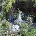 Cascade des Forges
