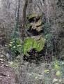 De la Vallée de Bonnan aux Combes d'Orsayrolles