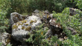 """Site mégalithique de Baccon dit """"Dolmen de la Mouise"""""""