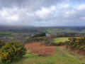 Chagford from Nattadon Common