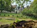 L'allée des Beaux Monts et ses arbres remarquables au départ de Compiègne