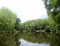 Chaponost - Parc du Boulard