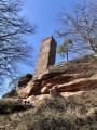 Étangs, châteaux, forêts et falaises de grès au départ de l'Étang d'Hanau
