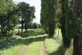 Chemin à la sortie de St Vincent la Châtre