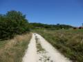 Chemin allant du Roc Coulon à Blanzaguet