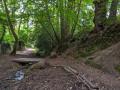 Chemin au fond du vallon de saint Buc