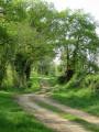 Chemin aux Simeaux