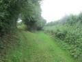 Sentier de petit bois à Étroeungt