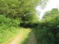 """Sentier """"Nature et Paysage"""" à Wignehies"""