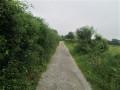 Chemin bocager
