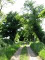 Chemin carrossable