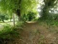 Chemin creux de Fontvieille