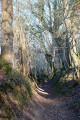 chemin creux près de Lignac
