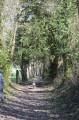Chemin de l'Aubertine