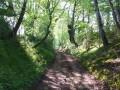 Chemin creux ...