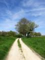 Une boucle dans la campagne environnante de Selles-sur-Nahon