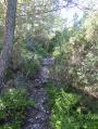 Chemin d'accés au Pas du Verré