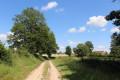 Chemin d'exploitation au pied des coteaux du bois de la Taille du Plessis