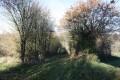 Chemin d'exploitation descendant au ruisseau de la Fontaine du Bignon
