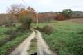 Chemin d'exploitation vers Pierouy