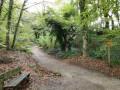 Balade champêtre au bois de Keroual à la sortie Nord-Est de Brest