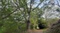 Chemin de Fontenelles