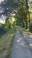 Chemin de halage de l'Adour