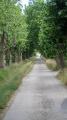 Le sentier de la feuille à Serviès-en-Val