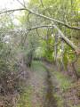 Chemin de la Brigandière