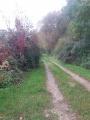 Chemin aux Viviers