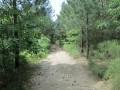 Chemin de la randonnée
