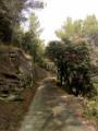 Chemin de la Tapy