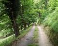 Chemin de Lengous