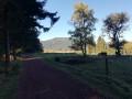 Chemin de Lisière de Forêt