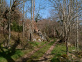 Chemin de Peyni