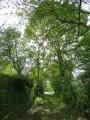 Chemin débouchant sur la Creuse