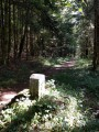 Chemin des bornes Franco-Suisse
