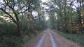 Chemin des Ogonnières