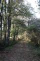 Chemin des Rossignols