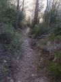 chemin du facteur, sentier pour redescendre au point de départ