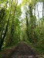 Promenade autour de la Ville d'Eu