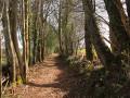 Chemin du peu d'Auriat