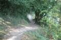 Chemin du tour du Lac du Jaunay