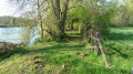 Chemin en bord de Sarthe