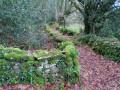 chemin en pierres sèches